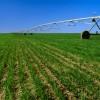 Valor da produção agrícola será recorde