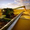 Safra de grãos deve chegar a novo recorde