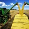 IGP-10 desacelera após queda de produtos agrícolas