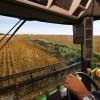 G-20 age contra manipulação de preços agrícolas